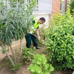 Un treballador contractat en el pla d'ocupació fent treballs de jardineria // Ajuntament de Sant Boi