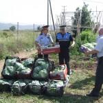 La cap de la regió policial metropolitana sud, Cristina Manresa, acompanyada d'un representant de la Policia Local, fa entrega de la collita de l'hort solidari // Mossos d'Esquadra