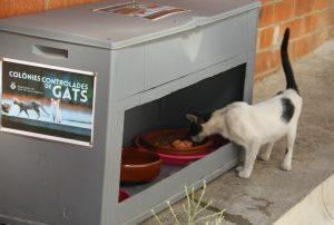 Un dels espais de control de colònies de gats // Ajuntament de Sant Boi